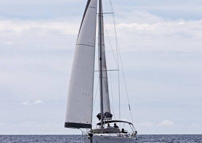 Panda-sailing-32